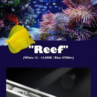 JMB Aqua Led Reef Bright