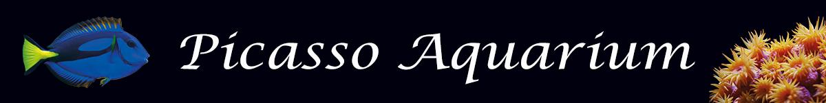 Picasso Aquarium logo