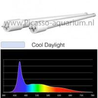 cool daylight 15k