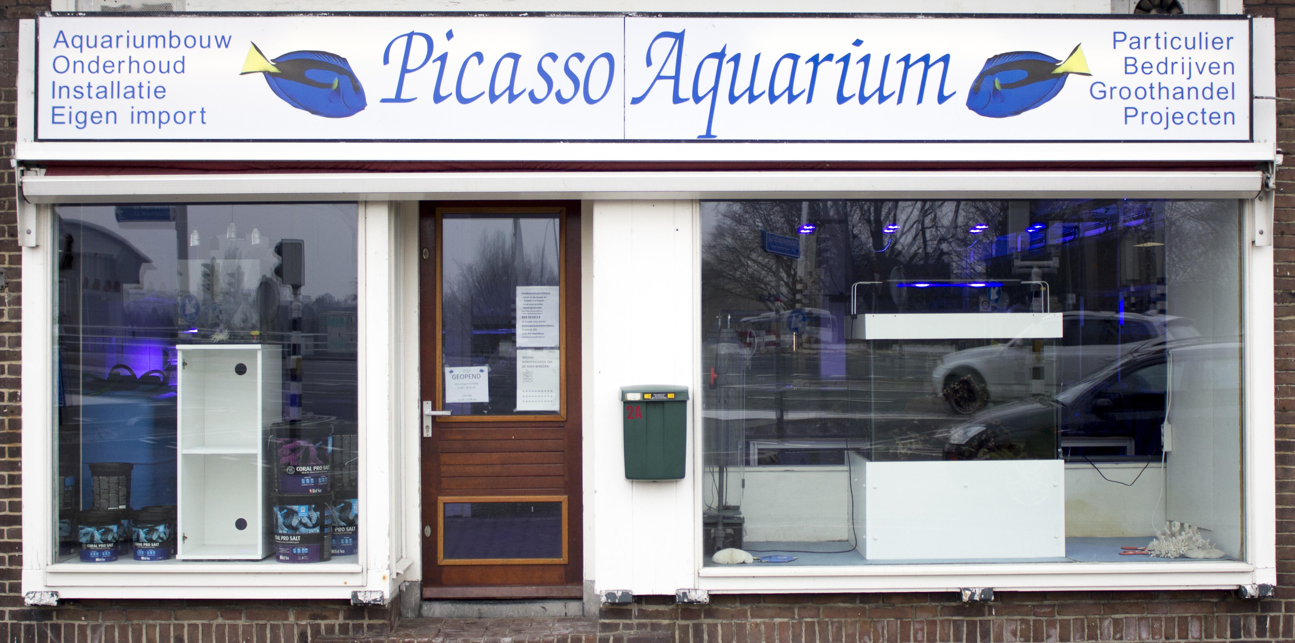 Picasso Aquarium