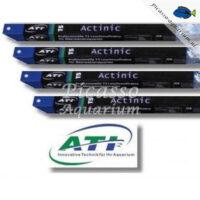 ATI Actinic