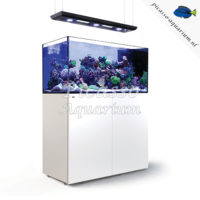Red Sea Reefer Reefer Peninsula P500 Deluxe