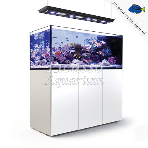 Red Sea Reefer Reefer Peninsula P650 Deluxe